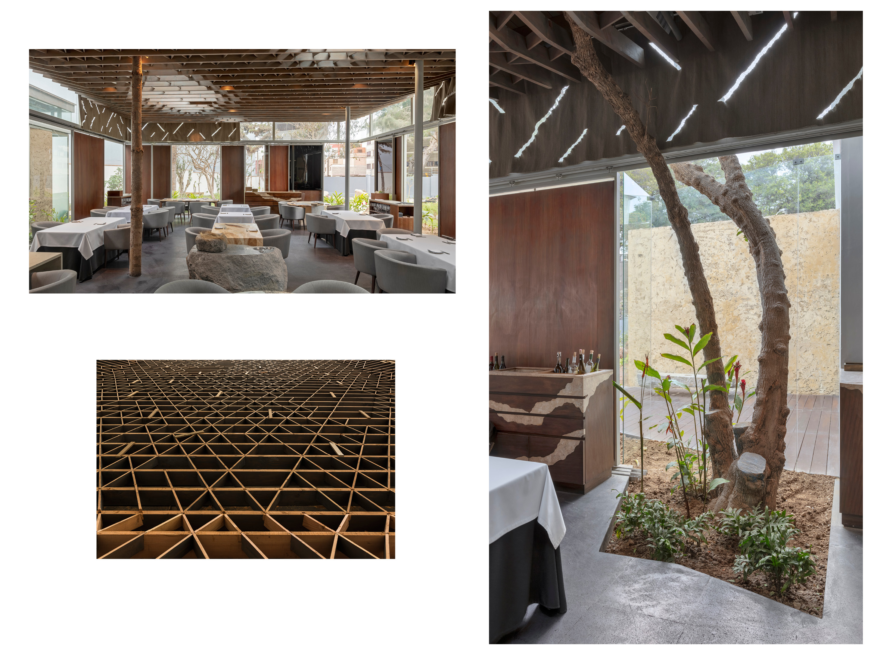 Arquitectura sostenible. Los árboles existentes fueron integrados a la arquitectura del restaurante. Sustainable architecture. The existing trees were integrated into the restaurant architecture.